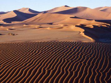 Summer In The Desert