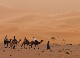 Viajes Por Marruecos, Rutas Al Desierto En 4×4, Visitas Por Marrakech Y Mucho Más..