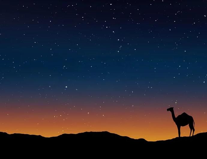 Navidad En El Desierto