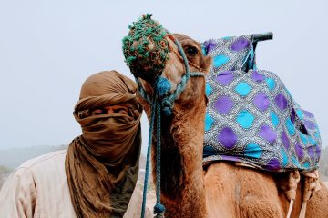 Traveling To Morocco With Children, The Best Way For Your Children To Know A Different Culture