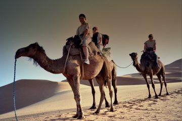 Viajes Al Desierto De Marruecos. Un Paseo Para No Olvidar