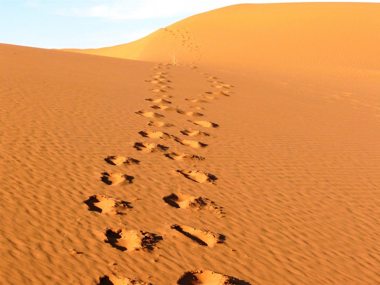 Desierto-subiendo-las-dunas-marruecos