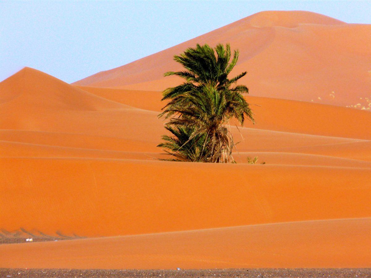 Tanger: Ciudades Imperiales, Montaña Y Desierto