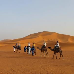 Travel To Morocco For Students