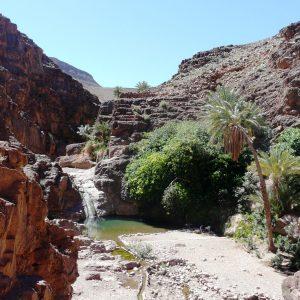 Oasis en el desierto de Marruecos